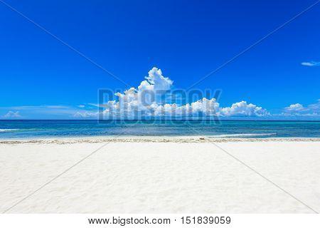 Sandy Sea Beach