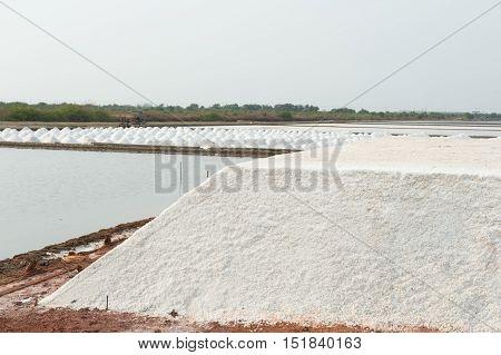 Salt Piles In Salt Farm At Samutsakorn Provience, Thailand