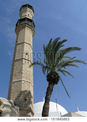 An upwards perspective view of a octagonal tower and a palm tree