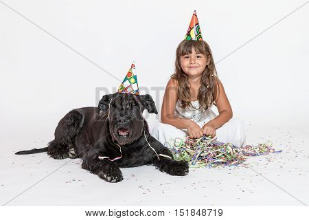 Cute smiling tanned little girl in white dress with paper hat on her head is sitting with lying Giant Black Schnauzer dog on the white background looking at the camera.