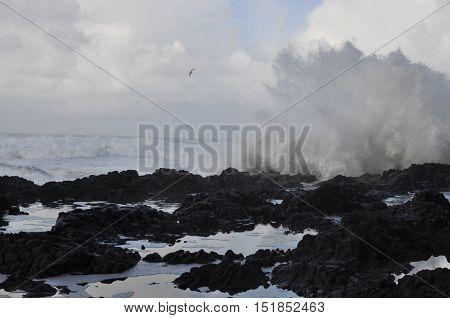 Devil's Churn beach on the Oregon Coast, USA