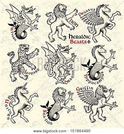 Vector heraldic beasts illustration in vintage style.