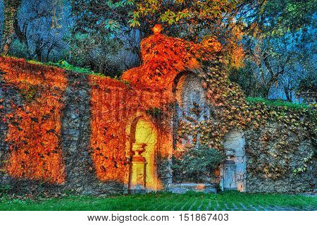 Ivy on the stone wall in garden with evening lights, atsunset