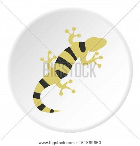 Striped lizard icon. Flat illustration of striped lizard vector icon for web