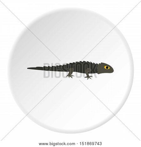 Grey iguana icon. Flat illustration of grey iguana vector icon for web