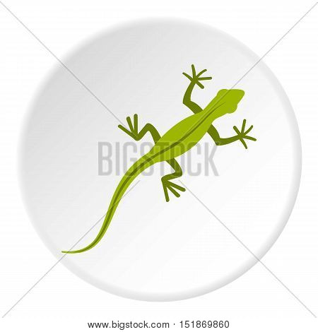 Lizard icon. Flat illustration of lizard vector icon for web