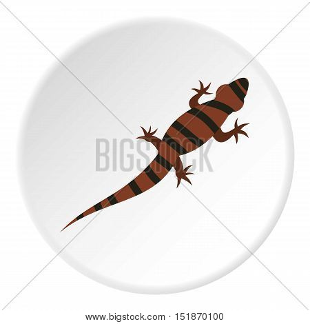Striped chameleon icon. Flat illustration of striped chameleon vector icon for web