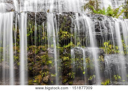 Flowing Water Over Rocks And Ferns Cascade Closeup. Tasmania