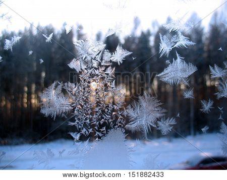Frozen Winter Window And Sun