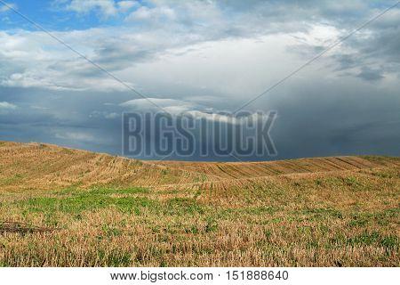 Dark, Stormy Sky And Field 2