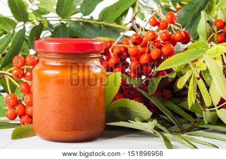 Rowan bunch with organic rowan in jam