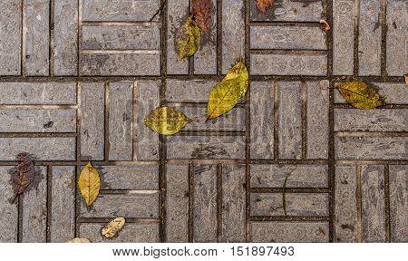 Pavement, stone pavement texture, sidewalk, pavement top view, close up, square tiles