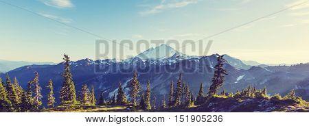 Mt. Baker recreation area, Washington, USA
