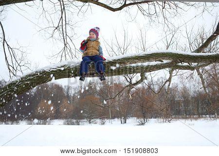 Little boy sits on branch of tree among fallen snow in winter day
