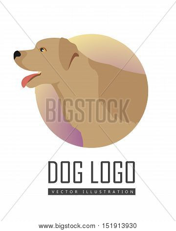 Golden retriever dog, round logo on white background. Dog icon. Vector illustration in flat style. Labrador retriever design. Cartoon dog character, pet animal.