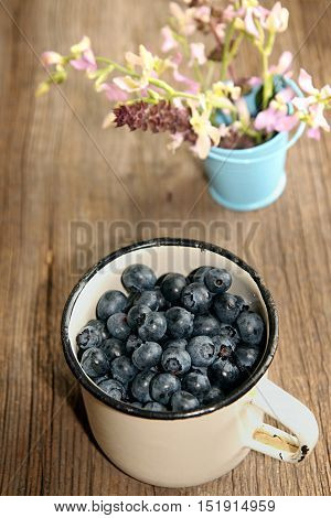 Bilberry In White Enameled Mug