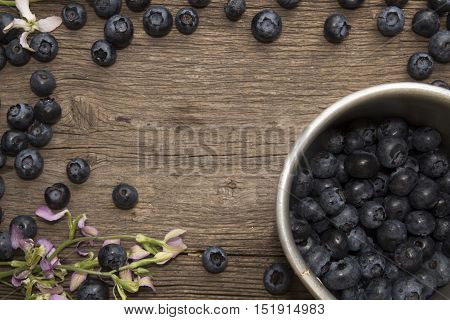 Bilberry On Rustic Table