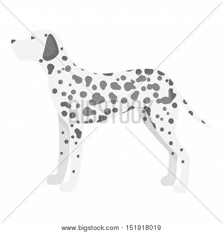 Dalmatian vector illustration icon in monochrome design