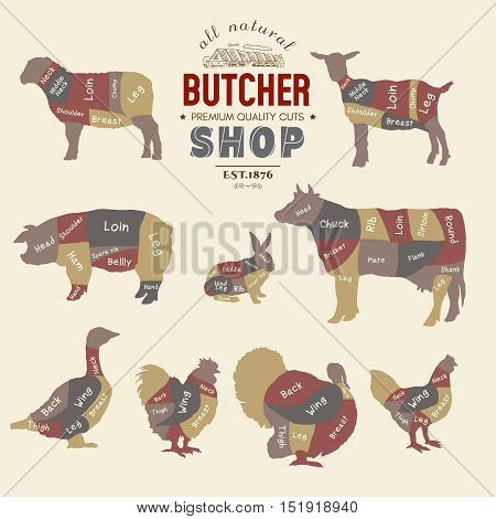 Butcher shop. Farm animals silhouette. Cow rabbit sheep pig goat goose duck turkey diagrams meat vector illustration