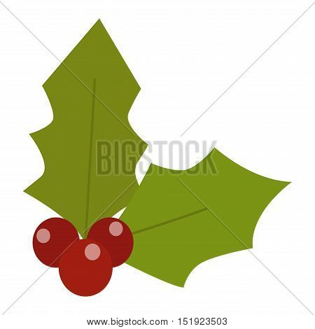European christmas berry holly ilex aquifolium leaves and fruit. Floral branch red xmas winter decor christmas berry symbol.  decorative holly christmas berry leaf traditional ornament symbol.