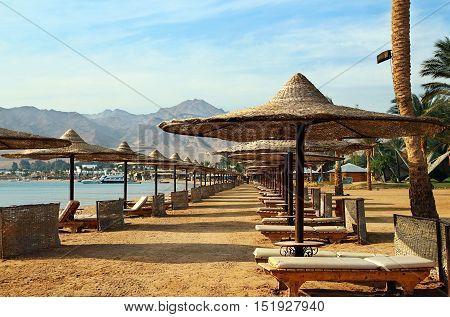 Row of umbrellas on beach in egyption resort