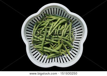 Green pods asparagus on a plastic tray with rectangular openings isolated on black.