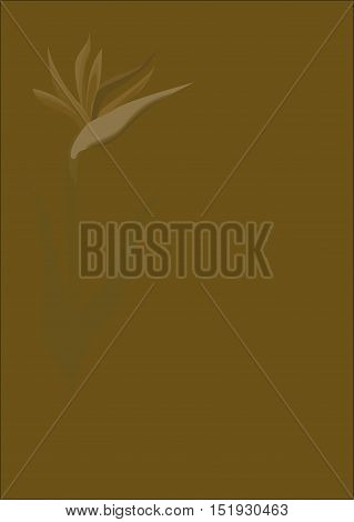 Abstract image of a flower strelittsii. The strelitzia. The strelitzia print. Floral print. Khaki background. Floral background for text. Illustration of flower strelittsii. Abstract background. Background for text.