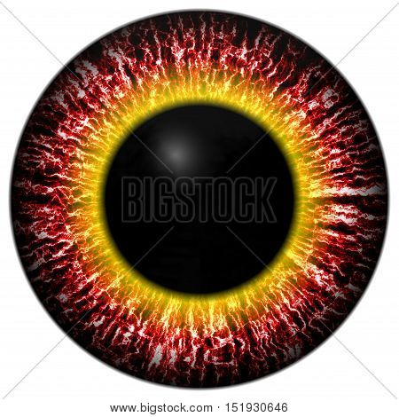 Red eye iris isolated element on white background