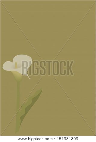 Abstract image of a flower calla. The calla. The calla print. Floral print. Khaki background. Floral background for text. Illustration of flower calla. Abstract background. Background for text.