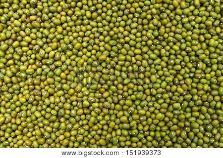 mung green beans texture pattern food background