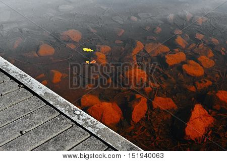 yellow leaves over stones under water of the Alum Lake Kamencove jezero in Chomutov at the end of the summer tourist season in Czech Republic