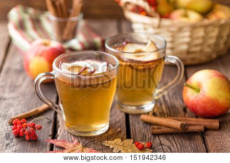 apple hot cider drink in two cups
