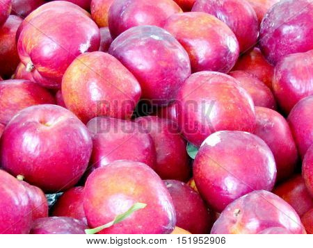 The hybrid of peach and apricot on bazaar in Tel Aviv Israel May 16 2012