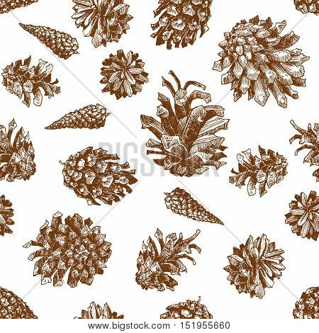 Seamless patern with christmas hand drawn graphic color pine cones