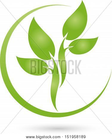 Plant and circle in green, leaves, nature and gardeners logo