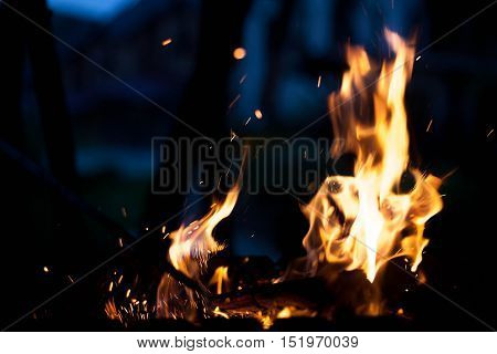 Beautiful fire. The concept texture and background