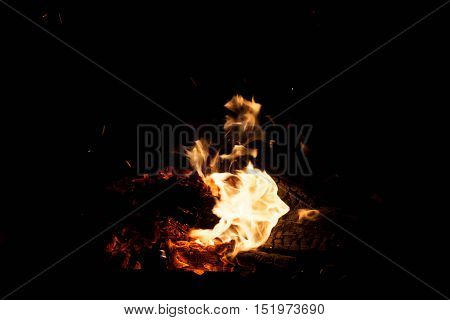 fire on a black background. The concept of nature.