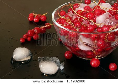 Red Currant In Glass Bowl Against Black Background And Thawing Cubes Of Ice