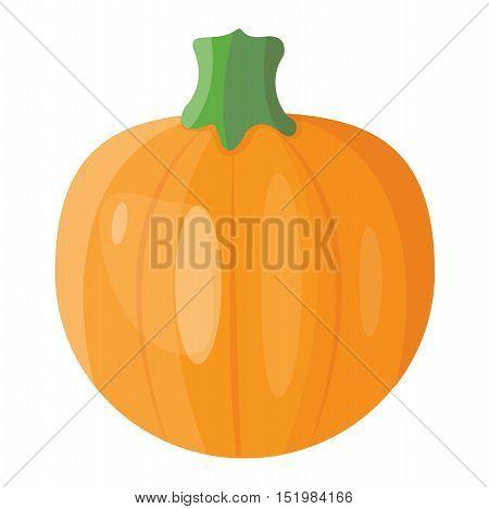 Autumn pumpkin element design, pumpkins oriental bittersweet vector illustration.