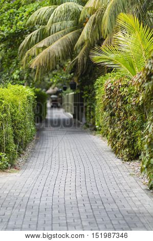 Green Hotel Way, Seychelles