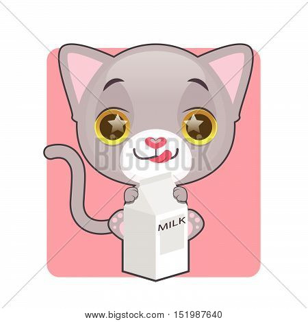 Cute gray kitten being eager to drink milk