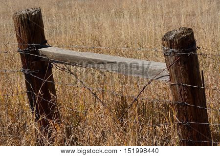 Simple wooden and barbed wire retro agricultural fence