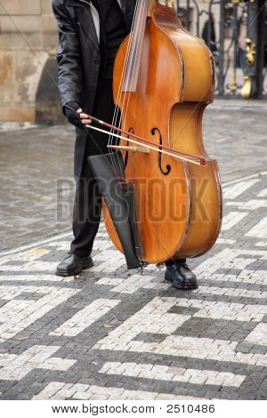 Musician Plays