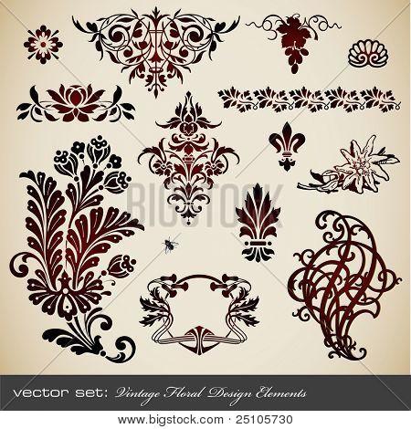 conjunto de vectores: elementos de diseño floral vintage