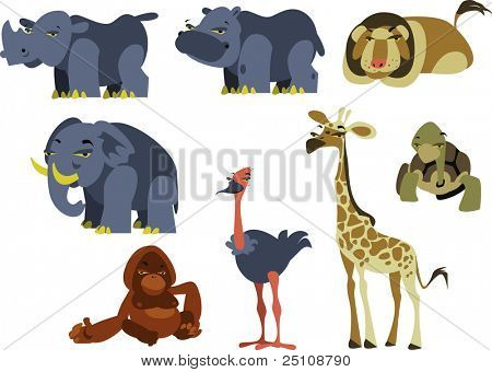 vector safari animals