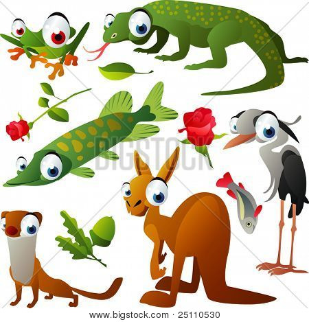 vector tree-frog, varan, pike, heron, weasel and kangaroo