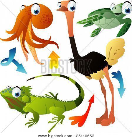 Vector animales: pulpo, avestruz, tortuga, iguana