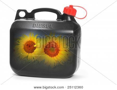 Black plastic gas can (fuel container) with sunflowers. Environmental concept. Natural gas metaphor.