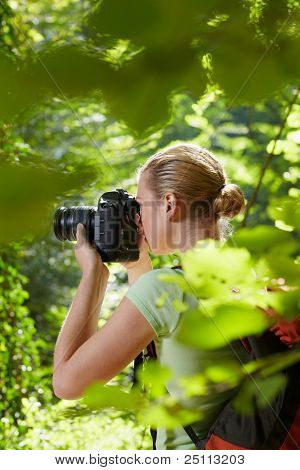 Young Female Photographer Hiking In Forest