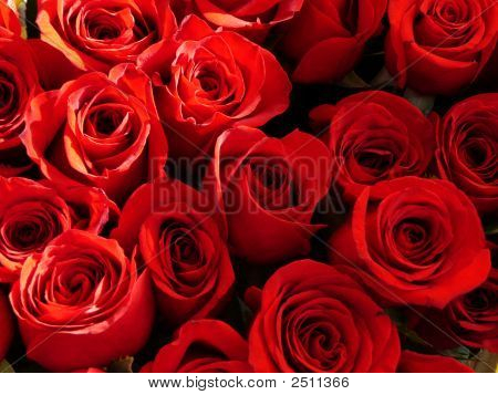 Red-Roses Nearest